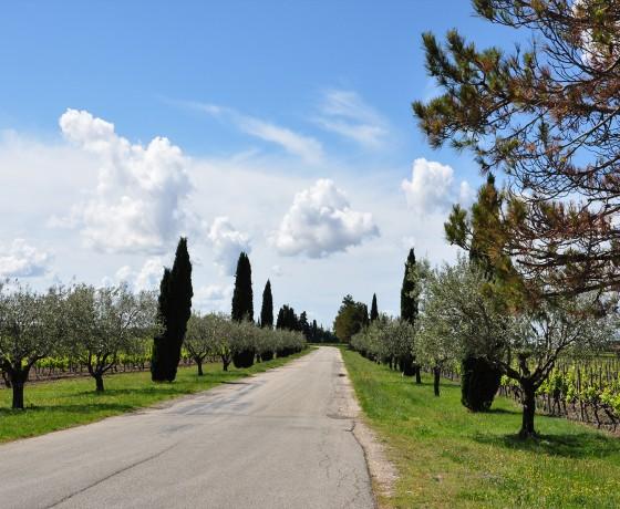 Voyage vélo route Provence France
