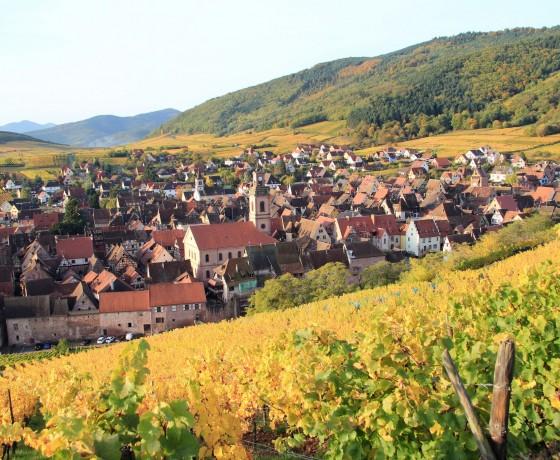 Alsace à vélo - Sur La Route