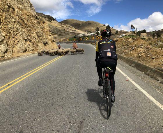 Personne roulant à vélo sur les route de l'équateur