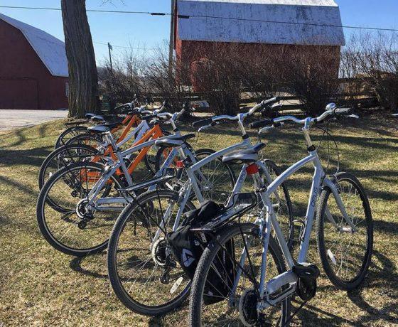 lac ontario à vélo - ontario à vélo - sandbanks à vélo - saint laurent à vélo - Prince edward county by bike - comté prince édouard à vélo - cyclotourisme - voyage vélo organisés - vélo québec - vélo ontario - ekilib - le monde à vélo