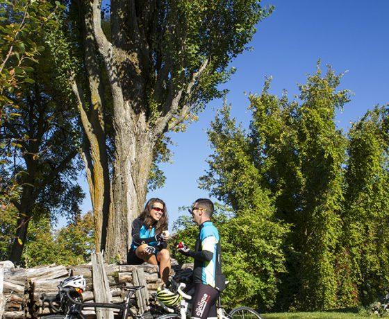 vélo québec - centre du québec à vélo - vélo au québec - ekilib - vacances à vélo - cyclotourisme
